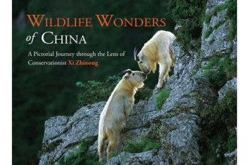 wildlife_wonders_china